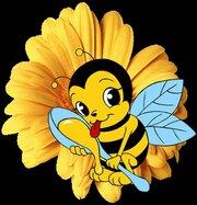 Продадим мед с частной пасеки