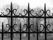 Заборы,  ворота,  ограждения,  калитки из металла от изготовителя