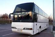 Автобусы в аренду и под заказ по Украине России СНГ .