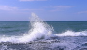 Азовское море - ежедневные выезды туда и обратно