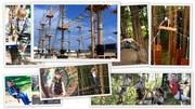 Как заработать $360 000 в сезон на верёвочном парке?