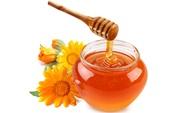 Куплю мед натуральный пчелиный оптом