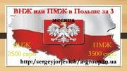 Помощь в получении пмж и внж в Польше