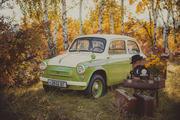 ЗАЗ-965АЭ Ялта горбатый