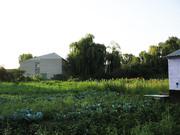 Продается дом 15 км от г. Луганска, или обменяю на квартиру в Луганске,